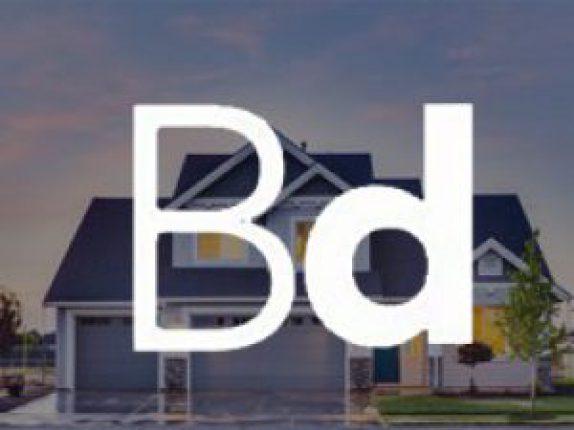 birddog-real-estate-app-development-300x225